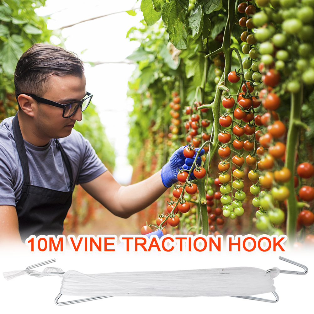 100 Pcs Tomato Support J Hooks Vegetable Clips Plants Support Binder for Garden Plant Fruit Support Tomato Support Clips